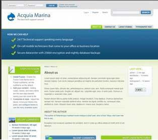 Preview of Acquia Marina theme